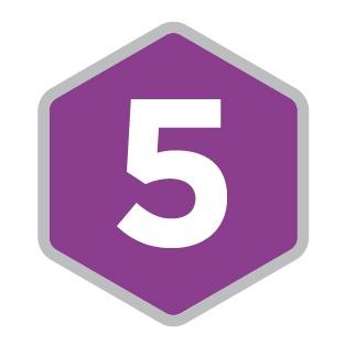 5 Icon.jpg